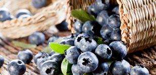 berry breakfast-listing